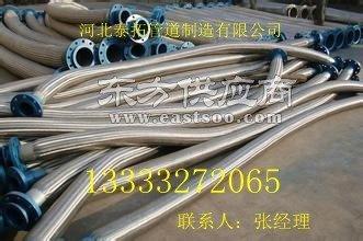 生产304法兰式金属软管厂家图片