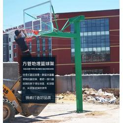 天水海燕式篮球架有限公司图片