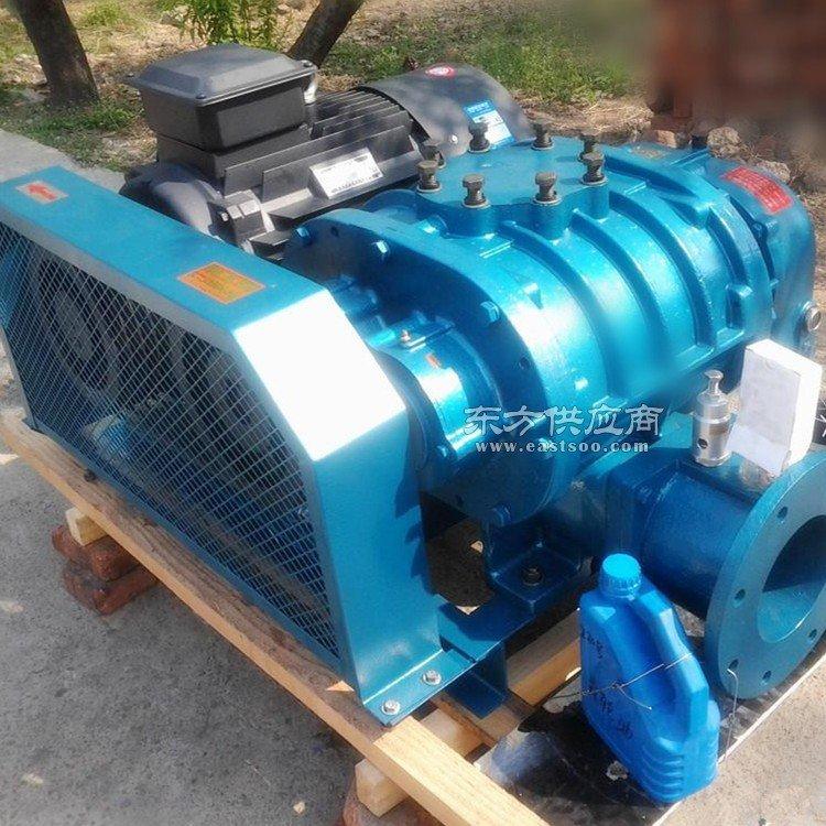 专业制造污水处理罗茨风机 增氧机250A三叶罗茨鼓风机图片