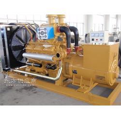 发电机厂家供应75kw里卡多发电机质量保证图片