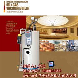 地中海新能源优质原料-燃油蒸汽发生器品牌-陕西燃油蒸汽发生器图片