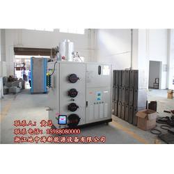 300KG燃气蒸汽发生器供应-地中海新能源节能环保图片