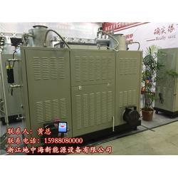 燃油蒸汽发生器生产厂家-地中海锅炉-蒸汽发生器生产厂家图片