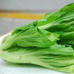 鲜津悦认证商家-东莞公司-工厂食堂承包公司图片