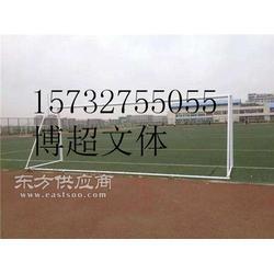 足球门生产厂家欢迎您的来电图片