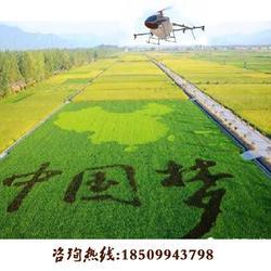 农林植保无人机,新疆无人机(在线咨询),哈密植保无人机图片