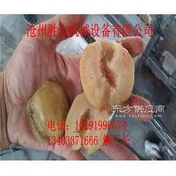 重庆红不软桃子去核加工流水线设备图片
