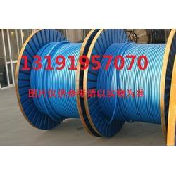 电缆ZR-RVVP22-300/300V-9*0.5,√美高梅娱乐介绍图片
