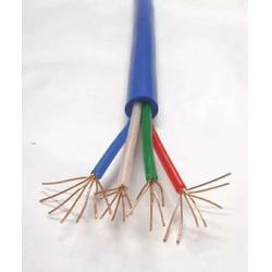 计算机用电缆DJYVPR专业生产厂图片