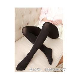 加厚打底袜、【东鸿针纺】(在线咨询)、打底袜图片