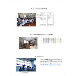 制衣打飞系统软件图片