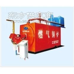 浴池环保锅炉图片
