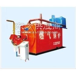 天然气锅炉生产F图片