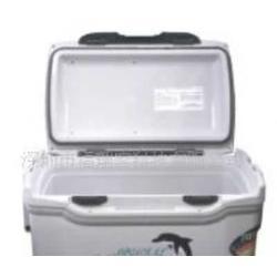 快餐保温箱冷藏保温箱户外保温批发采购图片