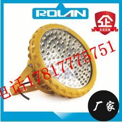 BDE507 防爆LED照明灯,BDE507高效节能LED防爆灯吊杆安装图片
