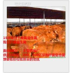 育肥牛增肥益生菌饲料添加剂供应商图片