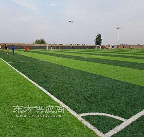 足球场人造草坪生产厂家辅料施工图片