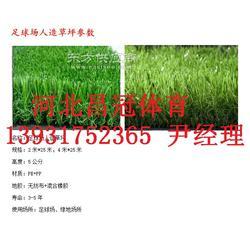 人造草坪生产厂家质优价廉图片