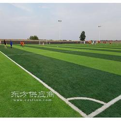 足球场人造草坪优点多多图片
