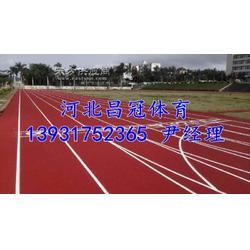 体育场预制型塑胶跑道生产厂家图片