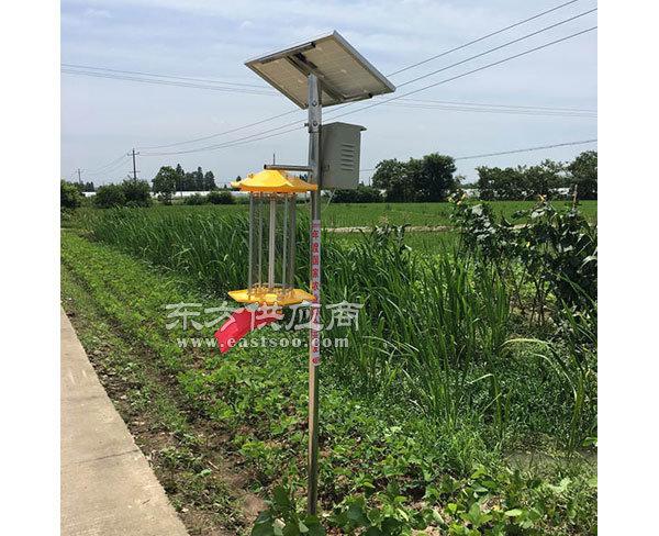 单管太阳能杀虫灯,安徽普烁光电,合肥太阳能杀虫灯图片