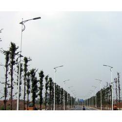 安徽led路灯、led路灯多少钱、安徽普烁光电(优质商家)图片