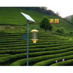 太阳能杀虫灯厂家,太阳能杀虫灯,安徽普烁光电路灯图片