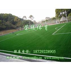 人造草坪供应、荣腾体育、平利人造草坪供应图片