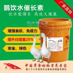 饮水型鹅育肥饲料图片