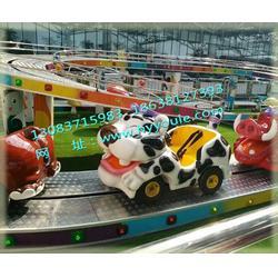 丽水小型游乐设备 郑州华艺游乐 室内小型游乐设备图片