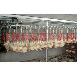 鸡鸭屠宰流水线规程,吉林鸡鸭屠宰流水线,诸城科源机械图片