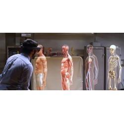 虚拟现实vr公司排名、欧雷新宇、虚拟现实vr图片
