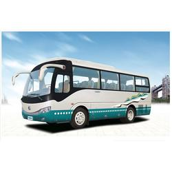 旅游大巴出租哪家好、穗旅汽车服务、天河区旅游大巴出租图片