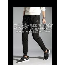 2017品牌定制猎奇服饰一件代发运动裤长裤运动裤长裤图片
