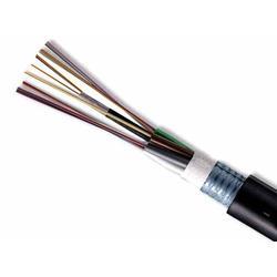 遼寧熱電偶補償導線_熱電偶補償導線廠家_天康電纜儀表圖片