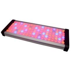 西德利新款简洁100W LED植物灯定时遥控 采用二次透镜图片
