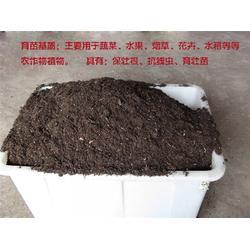 育苗基质哪家好,濮阳市慧昌农业科技(在线咨询),范县育苗基质图片