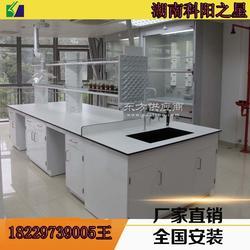实验台理化板钢制结构试验台水槽台天平台定制图片