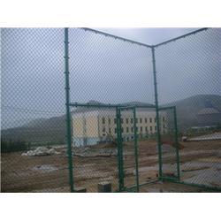 运动场网围栏的用途_腾佰丝网_甘肃运动场网围栏图片
