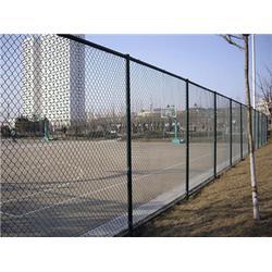 体育球场围栏多少钱-腾佰丝网制品厂家-锡林郭勒盟体育球场围栏