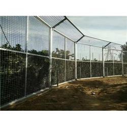 腾佰丝网(图)|小区护栏网厂家|护栏网图片