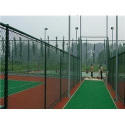 体育球场围栏尺寸-腾佰丝网(在线咨询)本溪体育球场围栏图片