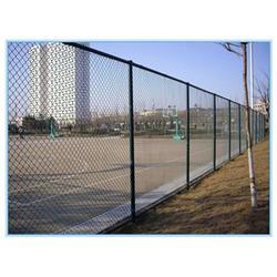 球场护栏网使用寿命-郑州球场护栏网-腾佰丝网(查看)图片