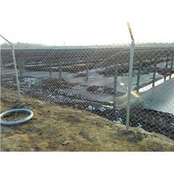 公路隔离护栏网-腾佰丝网实力厂家-公路隔离护栏网图片