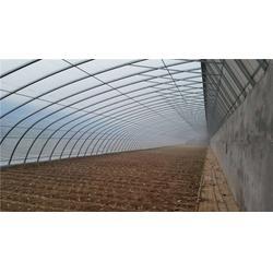 开封几字钢温室、开封几字钢温室公司、欣荣温室工程图片