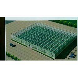 郑州玻璃温室规格,欣荣温室工程,郑州玻璃温室图片