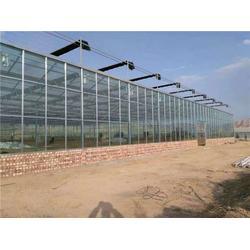 山西玻璃温室造价 欣荣温室工程 三门峡玻璃温室图片