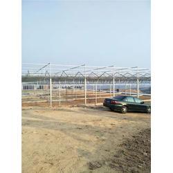开封玻璃温室 欣荣温室工程 玻璃温室安装公司图片