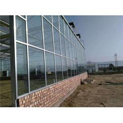 临汾建蔬菜温室大棚找谁 欣荣温室工程 蔬菜温室大棚图片
