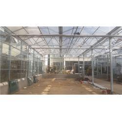 忻州哪有卖玻璃温室大棚,【欣荣温室工程】,玻璃温室大棚图片